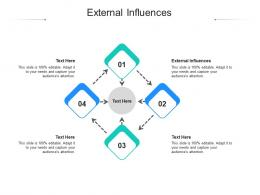 External Influences Ppt Powerpoint Presentation Icon Slide Cpb
