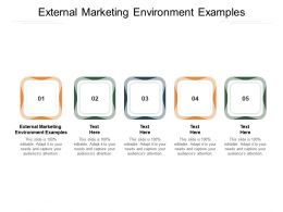 External Marketing Environment Examples Ppt Powerpoint Presentation Slide Cpb