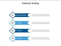 External Sorting Ppt Powerpoint Presentation Icon Guidelines Cpb