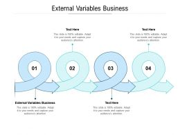 External Variables Business Ppt Powerpoint Presentation Layouts Templates Cpb