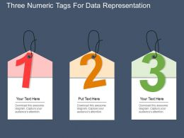 ey Three Numeric Tags For Data Representation Flat Powerpoint Design