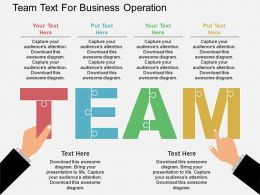 Ez Team Text For Business Operation Flat Powerpoint Design