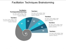 Facilitation Techniques Brainstorming Ppt Powerpoint Presentation Professional Infographics Cpb