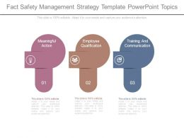 Fact Safety Management Strategy Template Powerpoint Topics