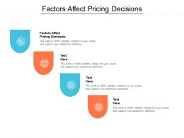 Factors Affect Pricing Decisions Ppt Powerpoint Presentation Gallery Cpb