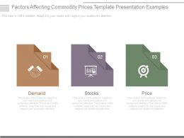 Factors Affecting Commodity Prices Template Presentation Examples