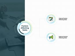 Factors Affecting Sales Ppt Powerpoint Presentation Inspiration Display