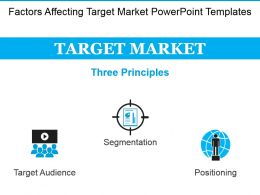 Factors Affecting Target Market Powerpoint Templates
