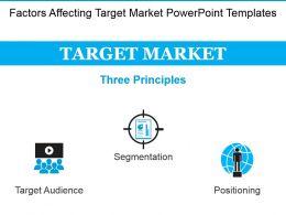 factors_affecting_target_market_powerpoint_templates_Slide01