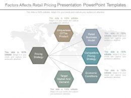 Factors Affects Retail Pricing Presentation Powerpoint Templates