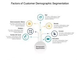 Factors Of Customer Demographic Segmentation