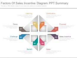 Factors Of Sales Incentive Diagram Ppt Summary