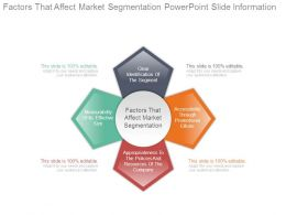 Factors That Affect Market Segmentation Powerpoint Slide Information