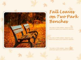 Fall Leaves On Two Park Benches