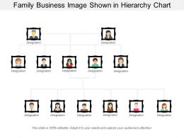 Family Business Image Shown In Hierarchy Chart