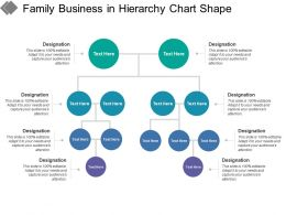 Family Business In Hierarchy Chart Shape