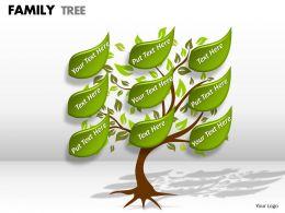 family tree 1 10