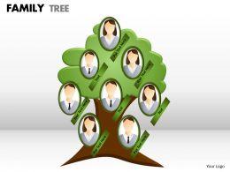 family tree 1 11