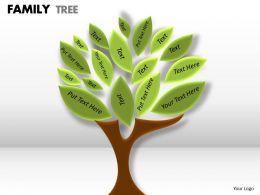 family tree 1 12