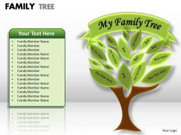 family tree 1 13