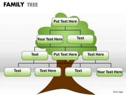 family tree 1 14