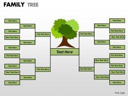 family tree 1 18