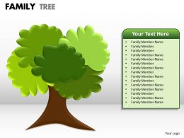 family tree 1 20