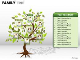 family tree 1 21