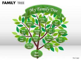 family tree 1 22