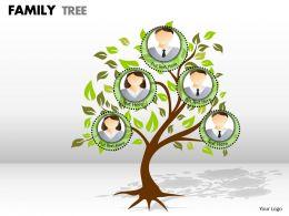family tree 1 23