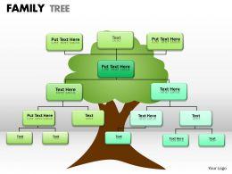 family tree 1 24