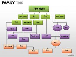 family tree 1 25
