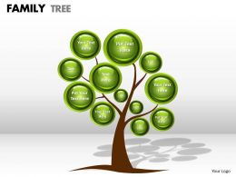 family tree 1 2