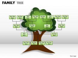 family tree 1 3