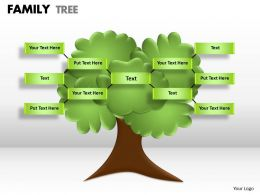 family tree 1 20 | presentation powerpoint templates | ppt slide, Modern powerpoint