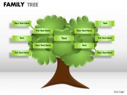 family tree 1 5