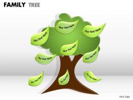 family tree 1 6