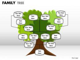 family tree 1 7