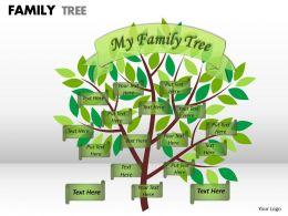 family tree 1 8
