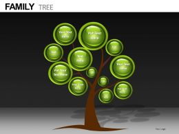family tree metaphor powerpoint templates and powerpoint, Modern powerpoint