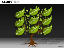 Family Tree ppt 10