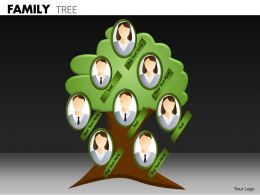 Family Tree ppt 11