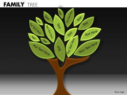 Family Tree ppt 12
