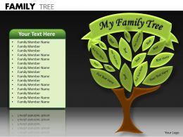 Family Tree ppt 13