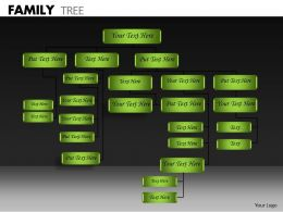 Family Tree ppt 16