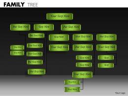 Family Tree ppt 16