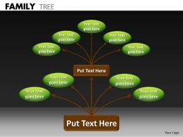 Family Tree ppt 17