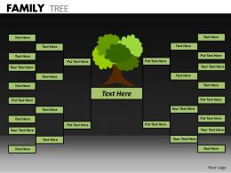 Family Tree ppt 18