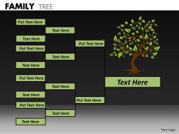 Family Tree ppt 19