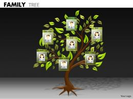 Family Tree ppt 1